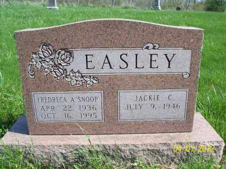EASLEY, FREDRECA A - Schuyler County, Illinois | FREDRECA A EASLEY - Illinois Gravestone Photos