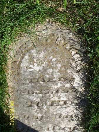 HARRIS, JAMES H - Schuyler County, Illinois | JAMES H HARRIS - Illinois Gravestone Photos