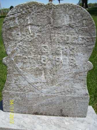 HODGES, JESSE - Schuyler County, Illinois | JESSE HODGES - Illinois Gravestone Photos