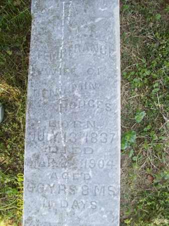 EVANS HODGES, TEMPERANCE - Schuyler County, Illinois | TEMPERANCE EVANS HODGES - Illinois Gravestone Photos