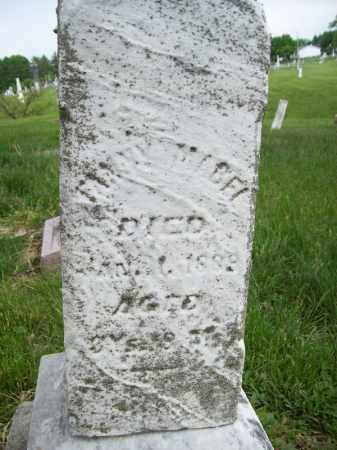 JACKSON, FANNY MABEL - Schuyler County, Illinois | FANNY MABEL JACKSON - Illinois Gravestone Photos