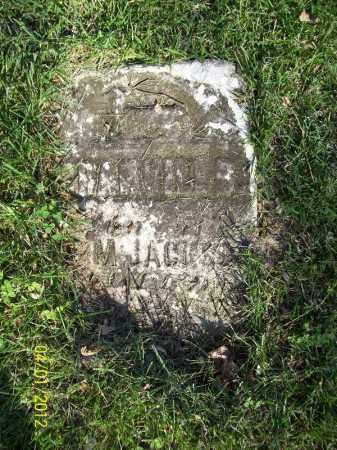 JACKSON, GRANVILL B - Schuyler County, Illinois | GRANVILL B JACKSON - Illinois Gravestone Photos