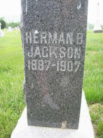 JACKSON, HERMAN B - Schuyler County, Illinois | HERMAN B JACKSON - Illinois Gravestone Photos