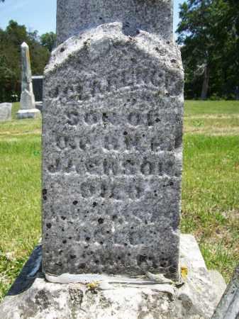 JACKSON, JAMES CLARENCE - Schuyler County, Illinois | JAMES CLARENCE JACKSON - Illinois Gravestone Photos
