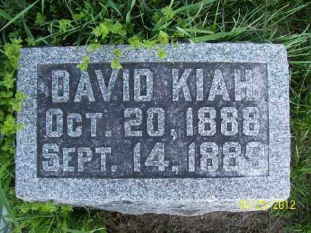 KIAH, DAVID - Schuyler County, Illinois | DAVID KIAH - Illinois Gravestone Photos