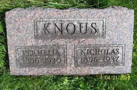 KNOUS, PERMELIA - Schuyler County, Illinois   PERMELIA KNOUS - Illinois Gravestone Photos
