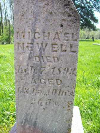 NEWELL, MICHAEL - Schuyler County, Illinois | MICHAEL NEWELL - Illinois Gravestone Photos