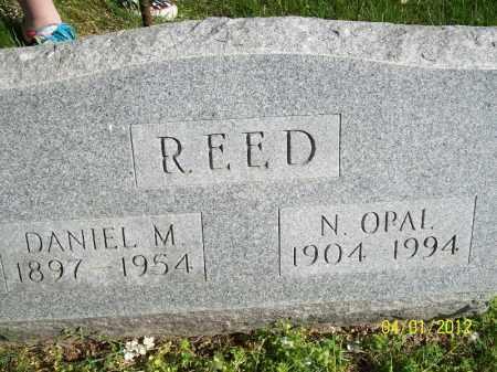 REED, DANIEL M - Schuyler County, Illinois | DANIEL M REED - Illinois Gravestone Photos