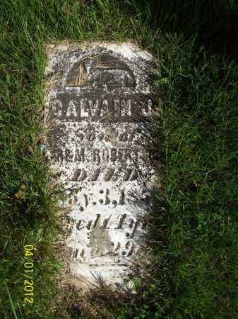 ROBERTSON, CALVAIN J - Schuyler County, Illinois | CALVAIN J ROBERTSON - Illinois Gravestone Photos
