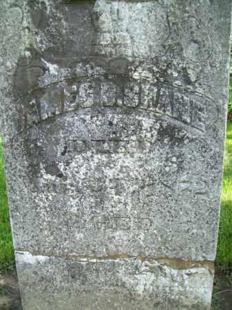 SHANE, JAMES B. - Schuyler County, Illinois | JAMES B. SHANE - Illinois Gravestone Photos