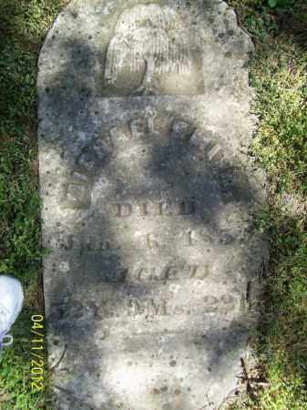SMITH, MICHAEL - Schuyler County, Illinois | MICHAEL SMITH - Illinois Gravestone Photos