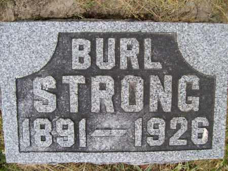 STRONG, BURL - Schuyler County, Illinois   BURL STRONG - Illinois Gravestone Photos