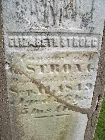 STRONG, ELIZABETH - Schuyler County, Illinois | ELIZABETH STRONG - Illinois Gravestone Photos