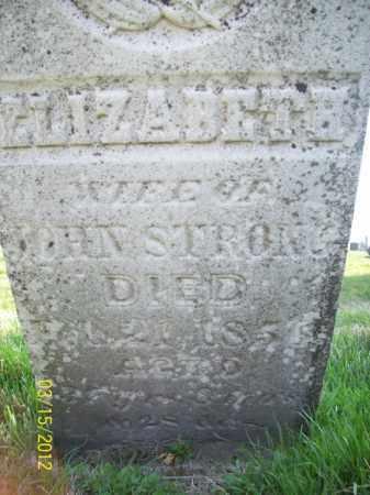 STRONG, ELIZABETH - Schuyler County, Illinois   ELIZABETH STRONG - Illinois Gravestone Photos