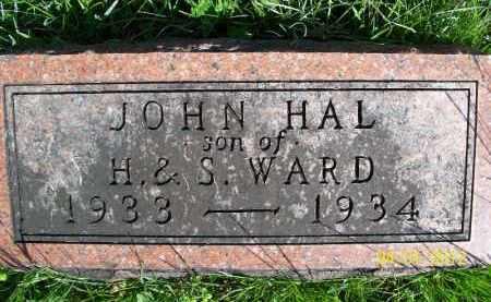 WARD, JOHN HAL - Schuyler County, Illinois   JOHN HAL WARD - Illinois Gravestone Photos