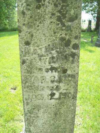WILMOT, NATHAN - Schuyler County, Illinois | NATHAN WILMOT - Illinois Gravestone Photos