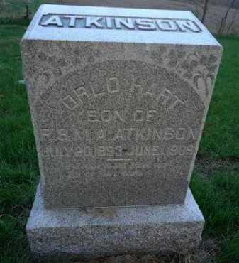 ATKINSON, ORLO HART - Scott County, Illinois | ORLO HART ATKINSON - Illinois Gravestone Photos