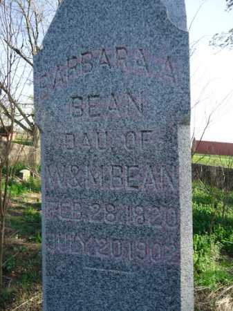 BEAN, BARBARA A. - Scott County, Illinois   BARBARA A. BEAN - Illinois Gravestone Photos