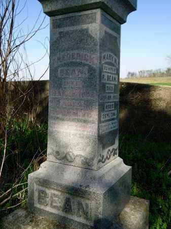 BEAN, FREDERICK - Scott County, Illinois   FREDERICK BEAN - Illinois Gravestone Photos