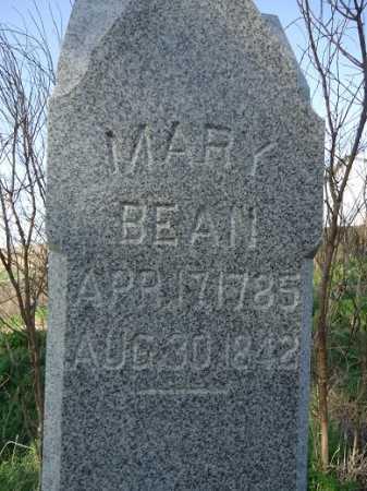 BEAN, MARY - Scott County, Illinois | MARY BEAN - Illinois Gravestone Photos