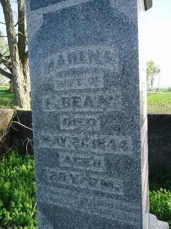 BEAN, MARENA - Scott County, Illinois | MARENA BEAN - Illinois Gravestone Photos