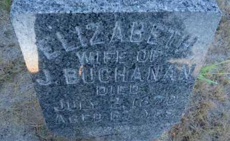 BUCHANAN, ELIZABETH - Scott County, Illinois | ELIZABETH BUCHANAN - Illinois Gravestone Photos