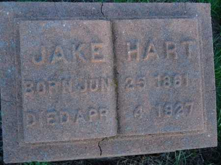 HART, JAKE - Scott County, Illinois | JAKE HART - Illinois Gravestone Photos