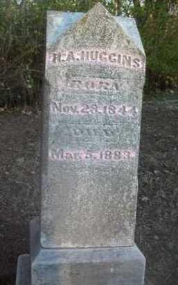 HUGGINS, H.A. - Scott County, Illinois   H.A. HUGGINS - Illinois Gravestone Photos