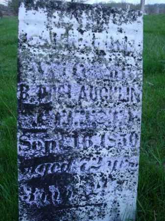 MCLAUGHLIN, CATHARINE - Scott County, Illinois | CATHARINE MCLAUGHLIN - Illinois Gravestone Photos