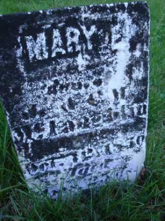 MCLAUGHLIN, MARY E. - Scott County, Illinois | MARY E. MCLAUGHLIN - Illinois Gravestone Photos