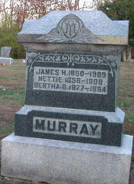 MURRAY, NETTIE - Scott County, Illinois | NETTIE MURRAY - Illinois Gravestone Photos