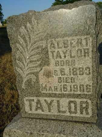 TAYLOR, ALBERT - Scott County, Illinois | ALBERT TAYLOR - Illinois Gravestone Photos