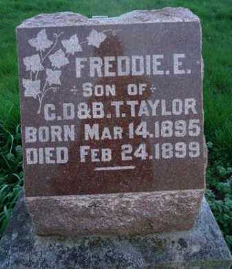 TAYLOR, FREDDIE E. - Scott County, Illinois | FREDDIE E. TAYLOR - Illinois Gravestone Photos