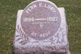 LUNY, FERN E - Shelby County, Illinois | FERN E LUNY - Illinois Gravestone Photos