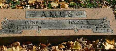 AMES, IRENE G - Stark County, Illinois | IRENE G AMES - Illinois Gravestone Photos