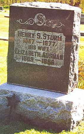 STURM, ELIZABETH - Stark County, Illinois | ELIZABETH STURM - Illinois Gravestone Photos