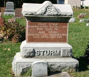 STURM, JANE - Stark County, Illinois   JANE STURM - Illinois Gravestone Photos