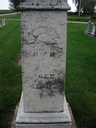 KEISTER, HANNAH - Stephenson County, Illinois | HANNAH KEISTER - Illinois Gravestone Photos
