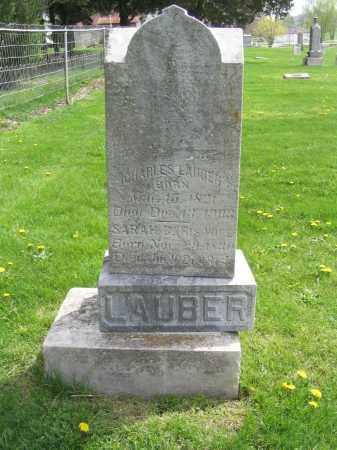 LAUBER, SARAH - Stephenson County, Illinois | SARAH LAUBER - Illinois Gravestone Photos