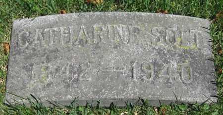 SOLT, CATHARINE - Stephenson County, Illinois | CATHARINE SOLT - Illinois Gravestone Photos