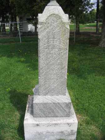STABENOW, GOTTFRIED - Stephenson County, Illinois | GOTTFRIED STABENOW - Illinois Gravestone Photos