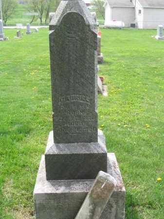 STABENOW, GABRIEL - Stephenson County, Illinois | GABRIEL STABENOW - Illinois Gravestone Photos