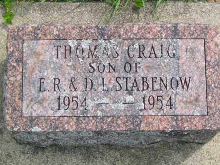 STABENOW, THOMAS CRAIG - Stephenson County, Illinois   THOMAS CRAIG STABENOW - Illinois Gravestone Photos