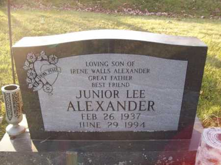 ALEXANDER, JUNIOR LEE - Tazewell County, Illinois | JUNIOR LEE ALEXANDER - Illinois Gravestone Photos