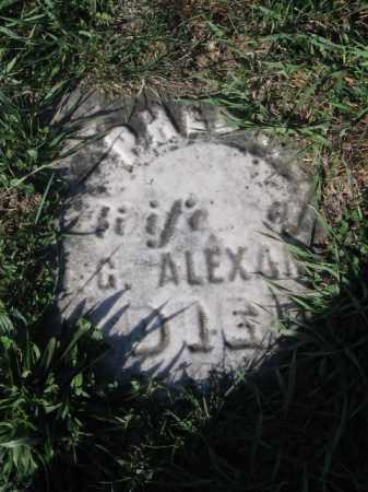 ALEXANDER, PHEBE - Tazewell County, Illinois   PHEBE ALEXANDER - Illinois Gravestone Photos