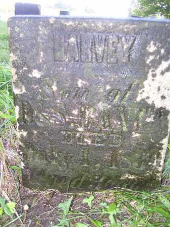 BANTA, HARVEY - Tazewell County, Illinois | HARVEY BANTA - Illinois Gravestone Photos