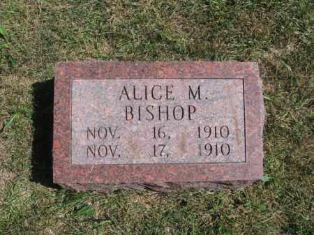 BISHOP, ALICE M - Tazewell County, Illinois | ALICE M BISHOP - Illinois Gravestone Photos