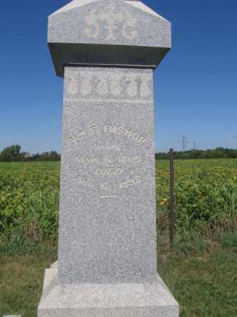 BISHOP, WILLIAM F - Tazewell County, Illinois | WILLIAM F BISHOP - Illinois Gravestone Photos