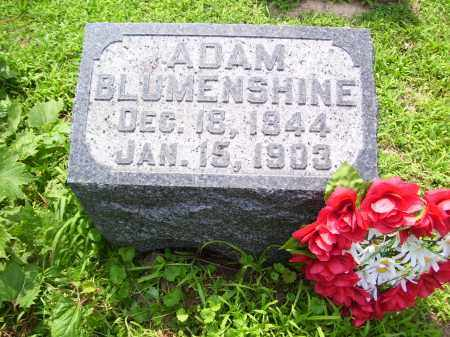 BLUMENSHINE, ADAM - Tazewell County, Illinois | ADAM BLUMENSHINE - Illinois Gravestone Photos