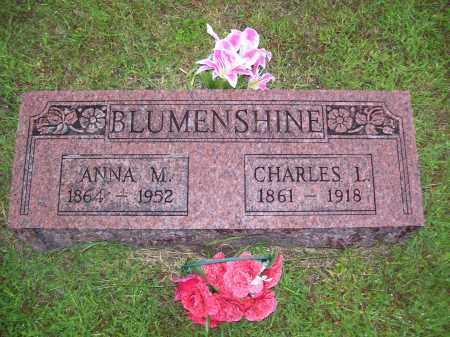 BLUMENSHINE, ANNA (MILLER) - Tazewell County, Illinois | ANNA (MILLER) BLUMENSHINE - Illinois Gravestone Photos